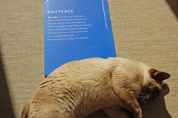 My cat shows its disdain for (a) the graphic design quality of Railtrack's later annual reports, and (b) me and my attempts to photograph such a report, by getting completely in the way. Photo by Daniel Wright [CC BY-NC-ND 2.0]