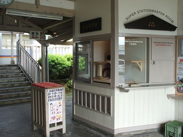 Tama's stationmaster office at Kishi Station. Photo by Twilight2640 at the Japanese language Wikipedia [GFDL or CC-BY-SA-3.0], via Wikimedia Commons