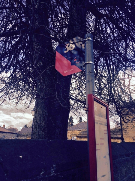 You don't often see an atmospheric shot of a bus stop flag, but here's one. This is one of the dramatic new flags for Blazefield's Route 36. © Best Impressions, used with permission